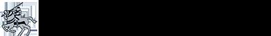 Warrior Cricket Logo